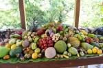 Edible Tropical Fruit from BotanicalArk