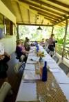 Our Botanical Ark lunch alfresco
